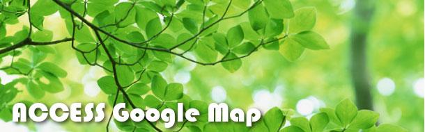 Access Google map